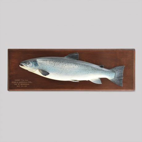 Carved Fish Plaque of a Rare Sea Trout